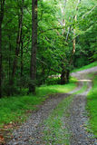 Rural country road Royalty Free Stock Images