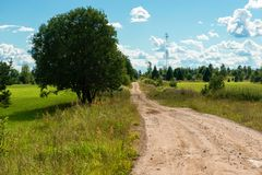 Rural country road to the village. Rural country road through the field to the village royalty free stock image