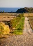 Rural Country scene on Lake Erie Stock Image