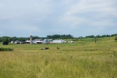 Rural Country York County Pennsylvania Farmland, on a Summer Day Stock Photography