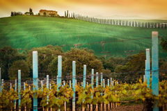 Rural countryside in Italy region of Tuscany Stock Image