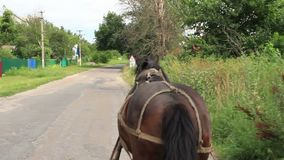 Rural countryside scape, horse harnessed carrying cart, village stock video footage