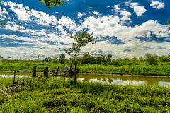 Rural Crossings. A old wooden bridge over a slow flowing river with lush greenery and blue skies and puffy clouds Stock Photos