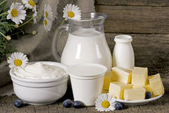 Rural dairy products Royalty Free Stock Images
