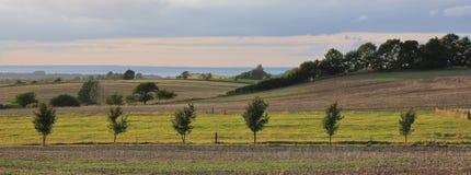 Rural Denmark. Landscape in Moen. Summer afternoon in Moen. Striped rural lanscape Stock Image