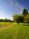 Rural Dirt Road. A dirt road meandering through the trees Stock Photos