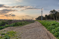 Rural dirt road in the field during sunset Stock Images