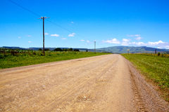 Rural Dirt Road Flanked By Corn Fields Stock Photography