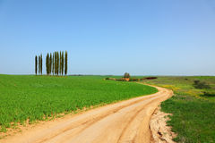 Rural dirt road between green fields Stock Photos