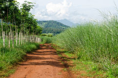 Rural dirt road and green meadow on long way Royalty Free Stock Photos