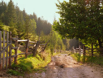 Rural dirt road in the mountain countryside. A wide dirt road along the wooden hedge and the forest behind it. Tops of fir and pine trees are seen behind a fence Stock Photography