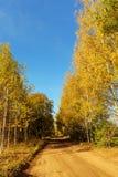 Rural dirt road Stock Images