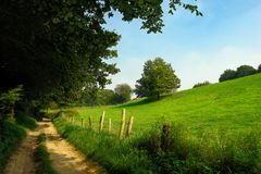 Rural dirt track in grassland Stock Image