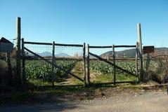 Rural door of a farm Stock Image