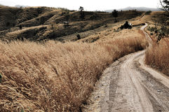 Rural dusty countryside road trough a bald hill with dry grass Royalty Free Stock Photography