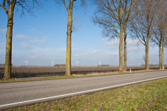 Rural Dutch landscape with windturbines Royalty Free Stock Photo