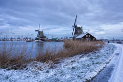 Rural dutch scenery. Traditional Dutch landscape early in the morning Stock Image