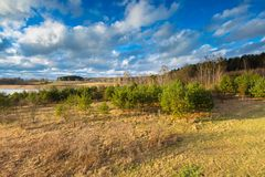 Rural early spring landscape photogrtaphed from above (from tall observation tower) Stock Image