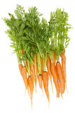 Rural ecological ugly carrot Stock Images