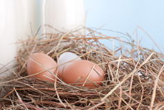 Rural eggs in hay and milk Royalty Free Stock Photography
