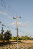 Rural electrical post by the road Stock Image