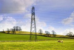Rural electricity pylon Stock Images