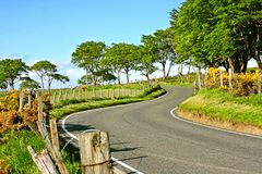 Rural empty road in Springtime Stock Photography