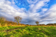 Rural English landscape. Rural English spring landscape at the sunset Royalty Free Stock Image