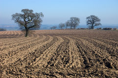 Rural English winter landscape. Looking over a ploughed field past trees to the distant horizon - a typical english winter landscape stock photos