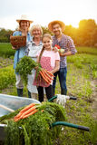 Rural family with vegetables Royalty Free Stock Photography