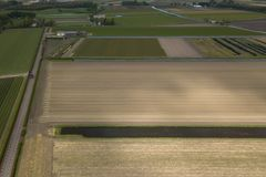 Rural farm fields with natural food growing in Netherlands. Agricultural fields with natural organic food crops growing in Netherlands.Aerial drone landscape of royalty free stock images