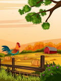 Rural farm landscape with cock Stock Images