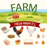 Rural Farm Landscape with Hen, Rooster and Eggs Realistic Icons. Vector Illustration Stock Photo