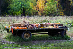 Rural farm stand Royalty Free Stock Photo