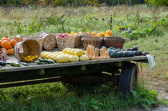 Rural farm wagon Royalty Free Stock Images