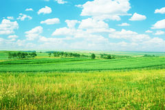 Rural farmland Royalty Free Stock Photos
