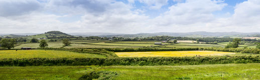 Rural Farmland in Devon near Dartmoor Royalty Free Stock Image