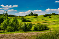 Rural farms with fields in the spring season. Stock Photography