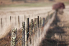 Rural Fence Royalty Free Stock Photography