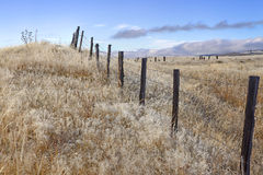 Rural Fence Stock Image