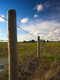Rural Fenceline. A farmland barbed wire fence against a pretty sky stock photo