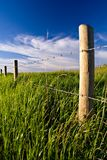 Rural Fenceline. A barbed wire fence stands amidst a grassy field stock image
