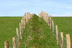 Rural Fencing. Wooden and wire double fence in a field at right angles to the horizon against a pale blue sky Stock Photography