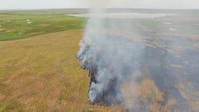 Rural Field Burning Near Lake stock video