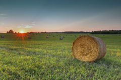 Rural field with haystacks at sunset Stock Images