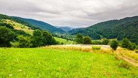 Rural field on hillside in mountains. Lovely rural landscape royalty free stock image
