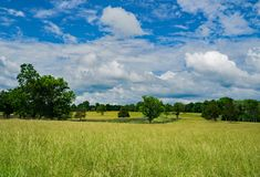 Rural Field located Appomattox County, USA. Rural Field with blue skies and white clouds located Appomattox County, Virginia, USA stock image