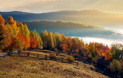 Rural field and orchard in autumn at sunrise. Mountainous countryside with fog in distant wally Royalty Free Stock Images