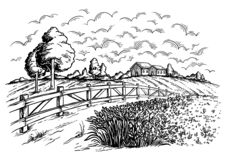 Rural field with ripe wheat on background of mill and fence, clouds. Rural field with ripe wheat on background of mill and village, clouds. Color vector stock illustration