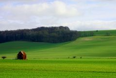 Rural field scene in Wiltshre. A rural country scene in England Royalty Free Stock Photos